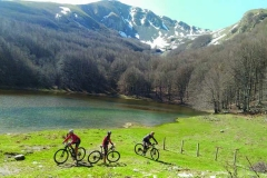 gallery mountain bike 2