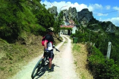 gallery mountain bike 3