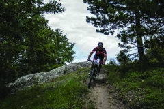 gallery mountain bike 5